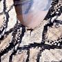 Maiô Com Detalhe De Argolinhas Cobra